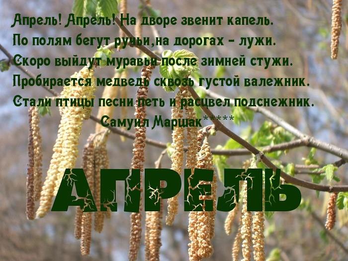 https://www.imagetext.ru/pics_max/images_8114.jpg