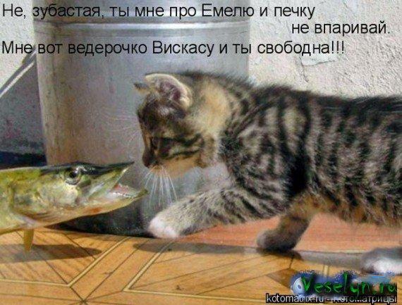 Картинки с надписями. Приколы.: www.imagetext.ru/inscription-94.php