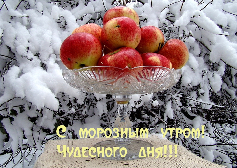 http://www.imagetext.ru/pics_max/images_12112.jpg
