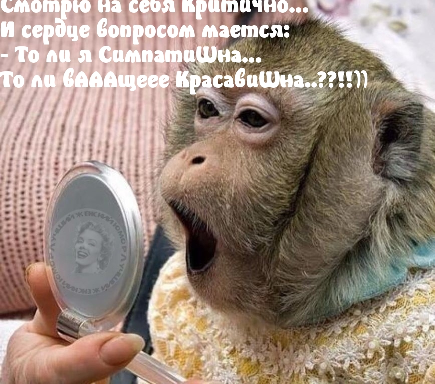 http://www.imagetext.ru/pics_max/images_12359.jpg