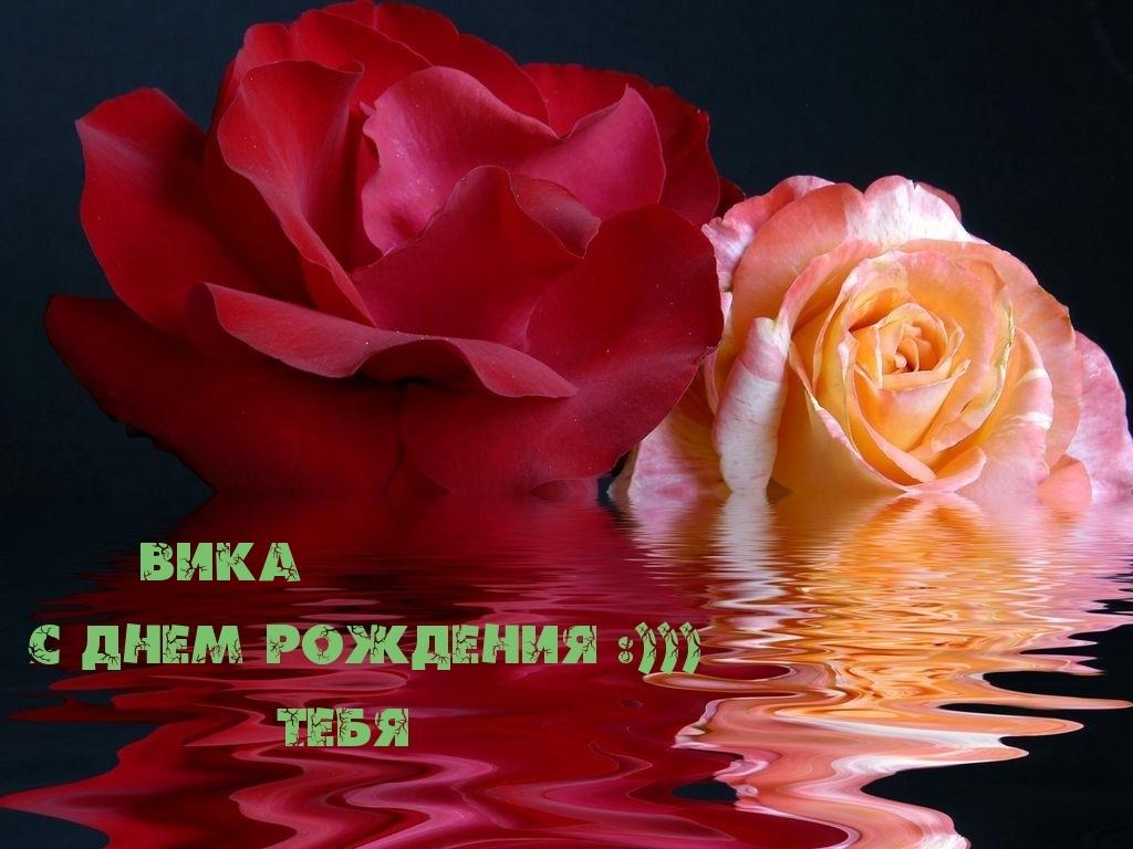 С днём рождения вика текст песни - 3