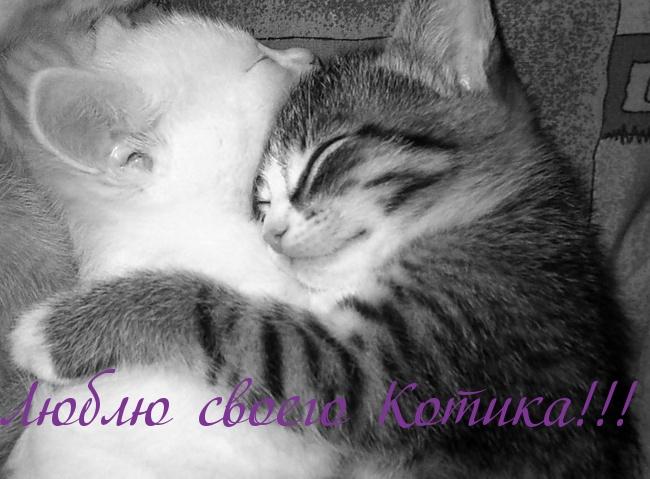 Картинки поцелуйчики обнимашки