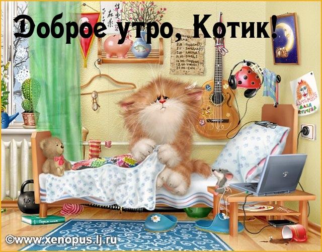 С надписями доброе утро котик