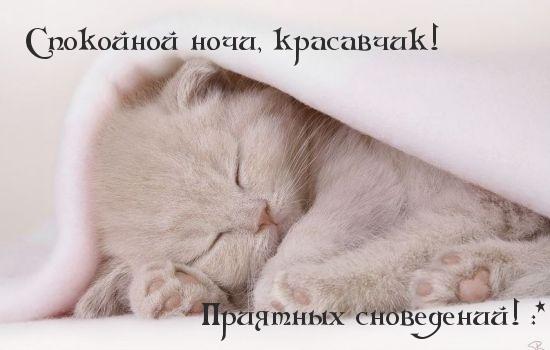 картинка родной спокойной ночи