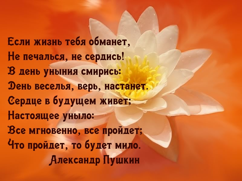 http://www.imagetext.ru/pics_max/images_6504.jpg