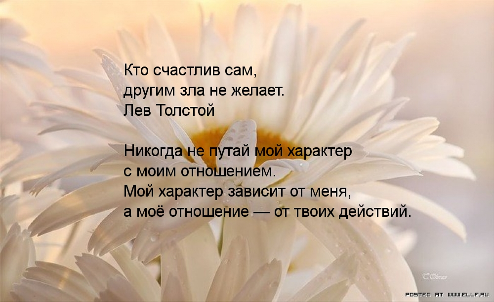 http://www.imagetext.ru/pics_max/images_8388.jpg