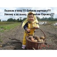 Люблю Сергея
