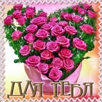 Розы в виде сердечка для тебя!